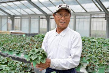下小田中の都市化とともに、農業の変遷を現在につなぐ「シクラメンづくり」の匠。 都市近郊農家ならではの利を最大限に活かし、優れた品質にこだわり続ける 【田中 滋(田中園芸代表)】